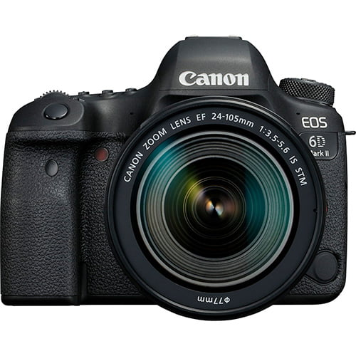 Canon EOS 6D Mark II and EF 24 105mm 3 Rear