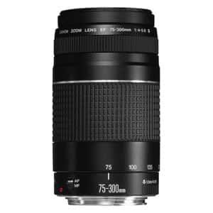 Canon EF 75-300mm f/4.0-5.6 III Telephoto Zoom Lens